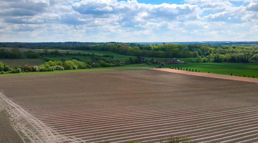 Vineyard Management in Kent from Agro-Pro