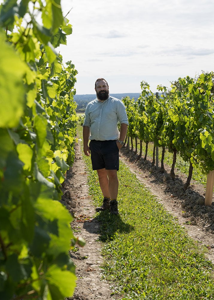 About Vineyard Management - Agro-Pro