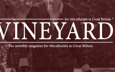 Vineyard Magazine Feature!